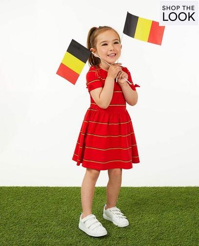 Allez l'équipe de Belgique!